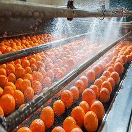 دستگاه شستشوی میوه