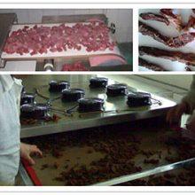 قیمت خشک کن گوشت