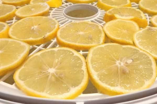 دستگاه خشک کن لیمو عمانی