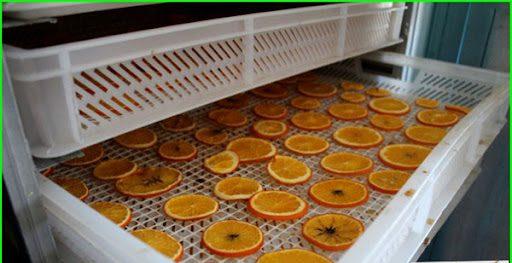 خشک کردن پرتقال در دستگاه میوه خشک کن